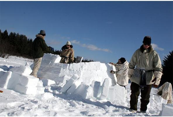 DO YOU WANT TO BUILD A SNOW HOUSE