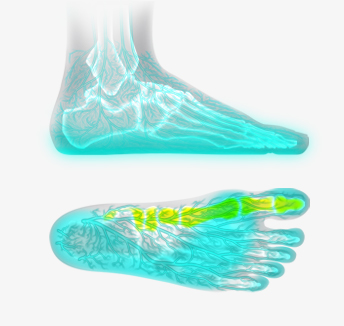 bd5b408c1c Barefoot Science - Learn More About The Benefits of Barefoot Shoes ...